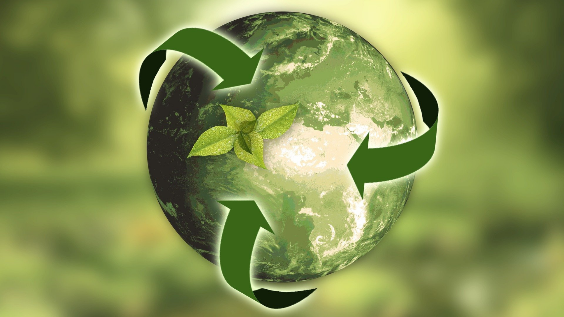 RJS Waste Management supports recycling to heal the earth