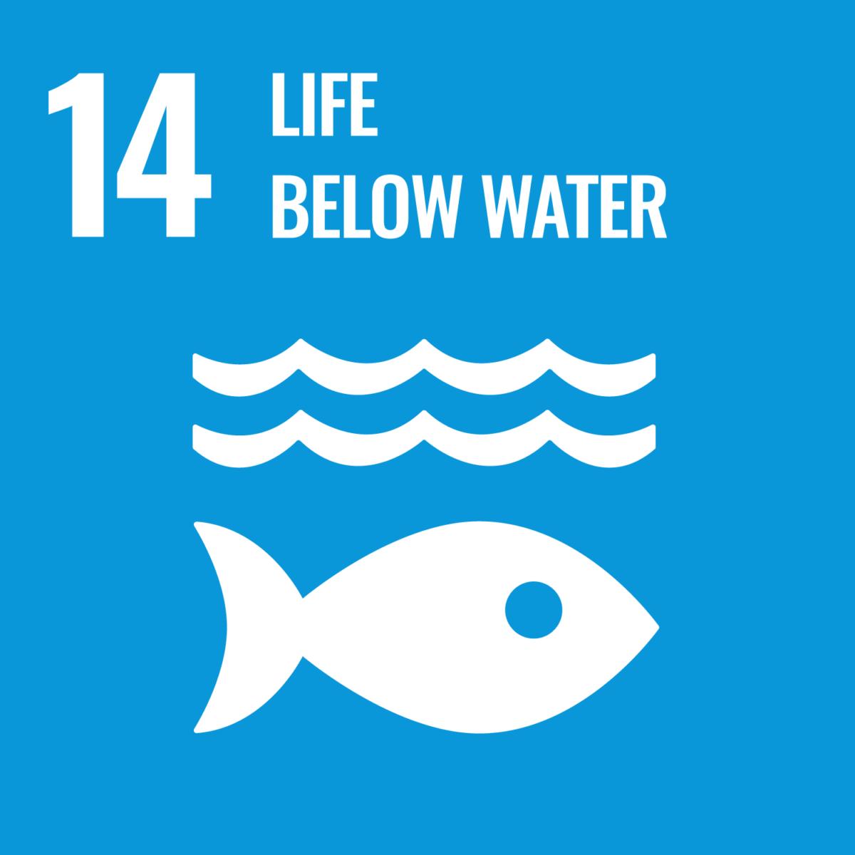 UN Sustainable Development Goal 13: Climate Change