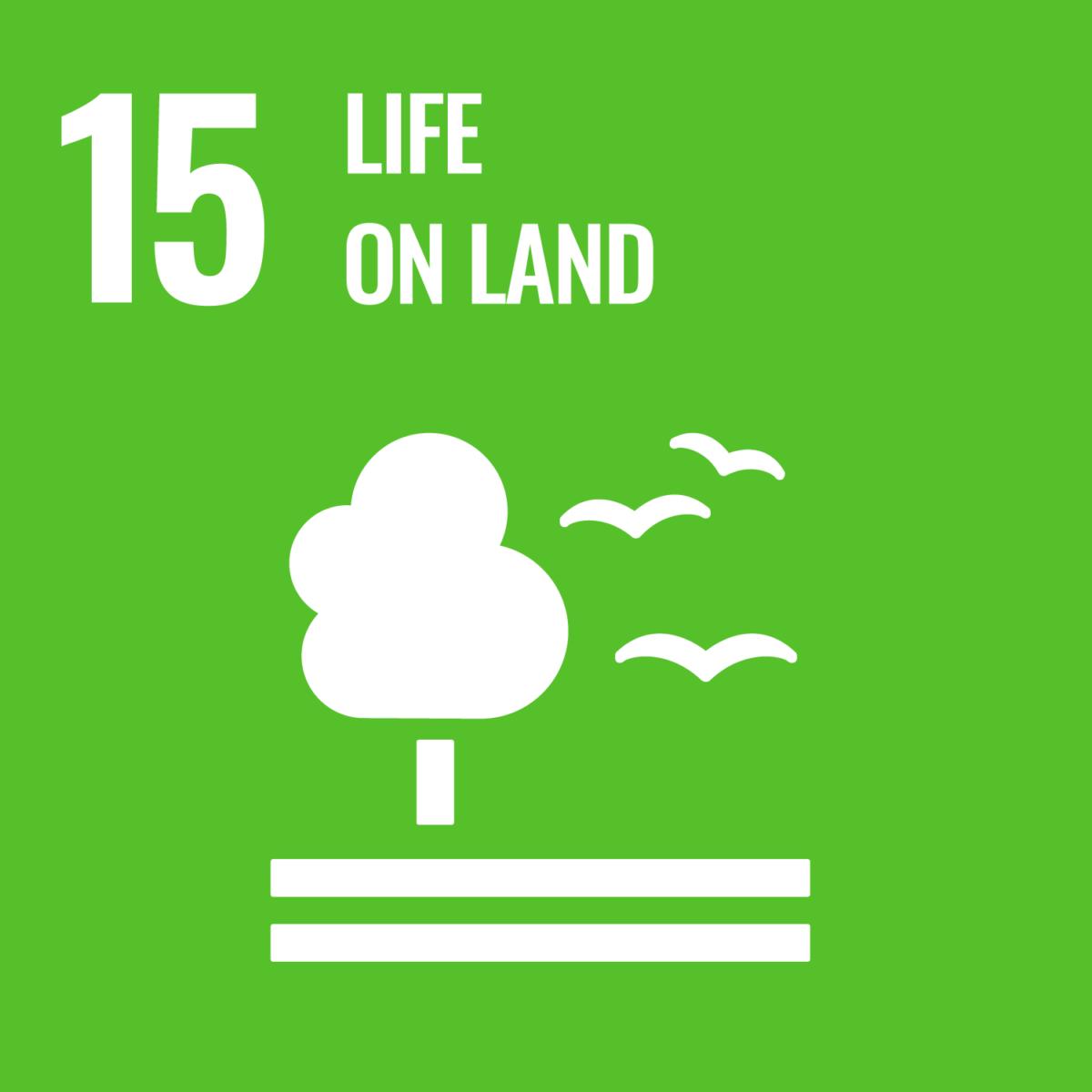 UN Sustainable Development Goal 15: Life on Land