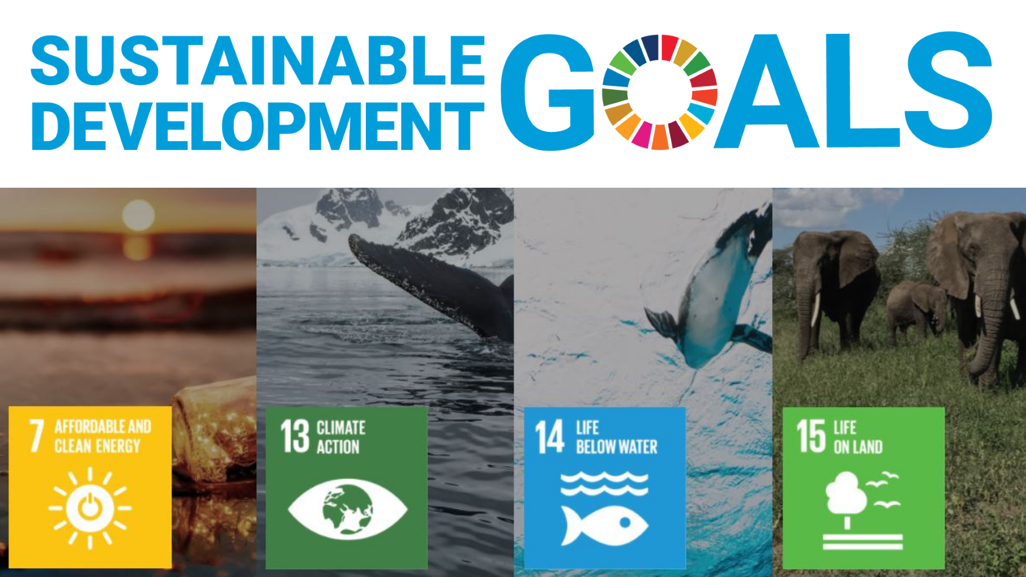 RJS Waste Management's contribution to the Sustainable Development Goals