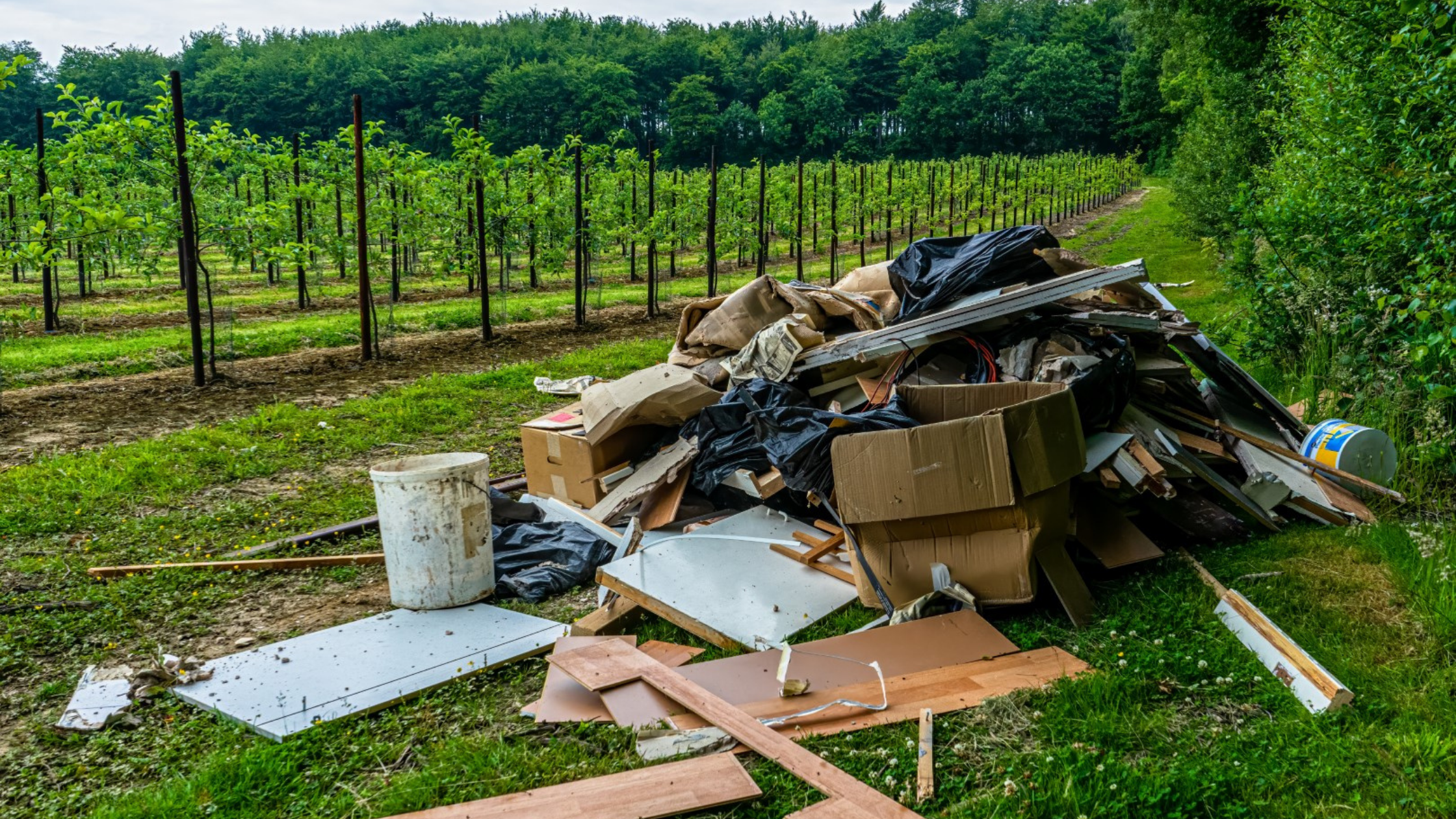 Fly-tipping: English Waste Crime Costs Soar by 53%